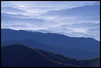 Blue ridges and valley from Clingman's dome, early morning, North Carolina. Great Smoky Mountains National Park, USA. (color)