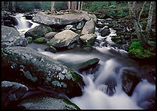 Stream, boulders, and trees, Roaring Fork, Tennessee. Great Smoky Mountains National Park, USA.