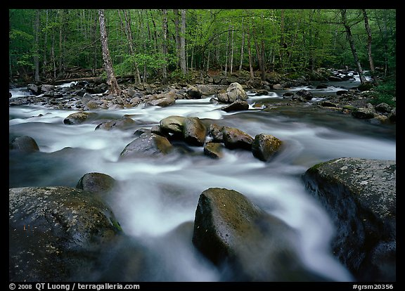Confluence of the Little Pigeon Rivers, Tennessee. Great Smoky Mountains National Park (color)