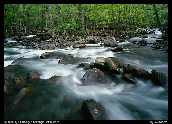 Confluence of the Middle Prong of the Little Pigeon River, Tennessee. Great Smoky Mountains National Park (color)
