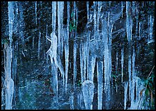 Icicles and rock wall. Great Smoky Mountains National Park, USA. (color)