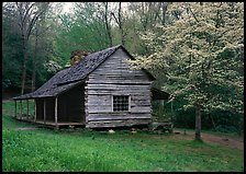 Noah Ogle log cabin in the spring, Tennessee. Great Smoky Mountains National Park, USA.