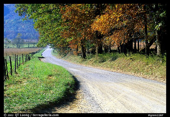 Gravel road in autumn, Cades Cove, Tennessee. Great Smoky Mountains National Park (color)