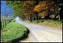 Gravel road in autumn, Cades Cove, Tennessee. Great Smoky Mountains National Park, USA.