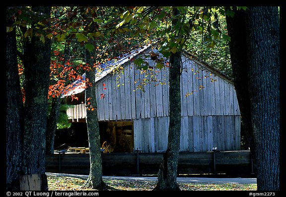 Barn in fall, Cades Cove, Tennessee. Great Smoky Mountains National Park (color)