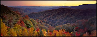 Appalachian autunm landscape of hills with trees in colorful foliage at sunset. Great Smoky Mountains National Park (Panoramic color)
