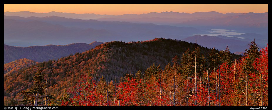 Trees and distant mountaintop ridges at sunrise. Great Smoky Mountains National Park (color)