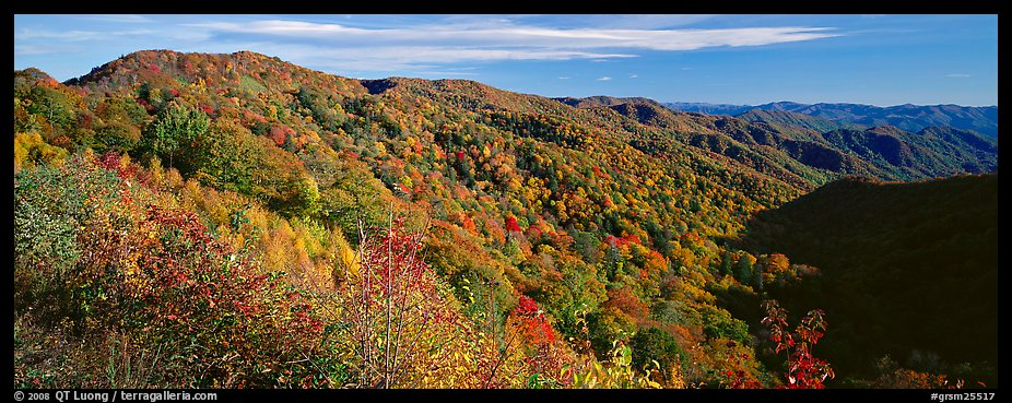 Appalachian hills covered with trees in autumn colors. Great Smoky Mountains National Park (color)