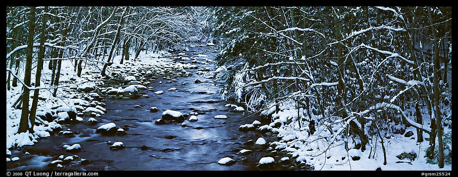 Stream in wintry forest. Great Smoky Mountains National Park (color)