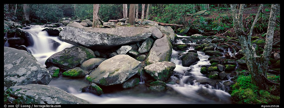 Cascading stream and boulders. Great Smoky Mountains National Park (color)