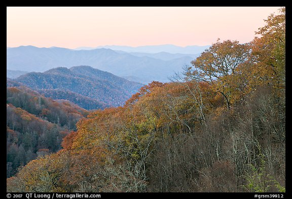 Ridge and mountains covered with trees in autuman foliage, dawn, North Carolina. Great Smoky Mountains National Park (color)