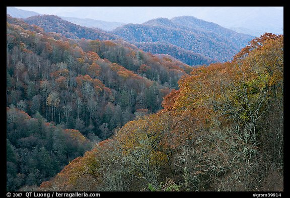 Ridges covered with deciduous trees in fall, North Carolina. Great Smoky Mountains National Park (color)