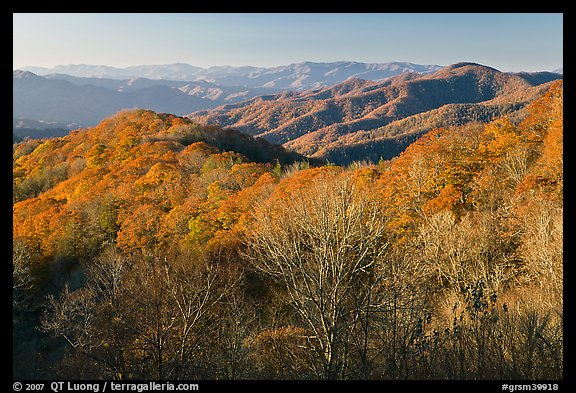 Mountains in autumn foliage, early morning, North Carolina. Great Smoky Mountains National Park (color)