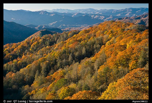 Ridges with trees in autumn foliage, North Carolina. Great Smoky Mountains National Park (color)