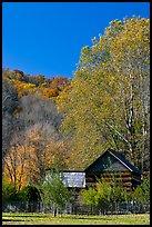 Historic log building in fall, Oconaluftee Mountain Farm, North Carolina. Great Smoky Mountains National Park, USA.