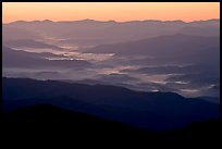 Ridges and valley fog seen from Clingman Dome, sunrise, North Carolina. Great Smoky Mountains National Park, USA. (color)