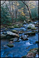 Stream in autumn, Roaring Fork, Tennessee. Great Smoky Mountains National Park ( color)