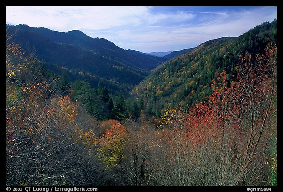 Valley covered with trees in late autumn, Morton overlook, Tennessee. Great Smoky Mountains National Park (color)