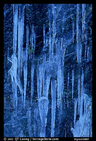 Icicles on rock face, Tennessee. Great Smoky Mountains National Park (color)