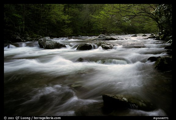 Little River flow, Tennessee. Great Smoky Mountains National Park (color)