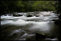 Little River flow, Tennessee. Great Smoky Mountains National Park ( color)