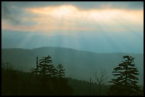 Sunrays over ridges, early morning, North Carolina. Great Smoky Mountains National Park, USA. (color)