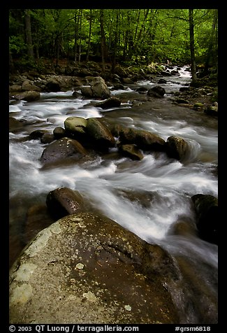 Boulders in confluence of rivers, Greenbrier, Tennessee. Great Smoky Mountains National Park (color)