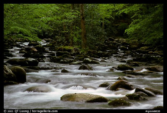 Middle Prong of the Little Pigeon River, Tennessee. Great Smoky Mountains National Park (color)