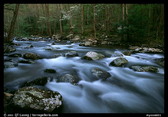 Water flowing over boulders in the spring, Treemont, Tennessee. Great Smoky Mountains National Park, USA.