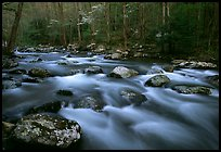 Water flowing over boulders in the spring, Treemont, Tennessee. Great Smoky Mountains National Park, USA. (color)