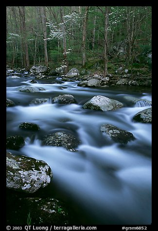 Boulders in flowing water, Middle Prong of the Little River, Tennessee. Great Smoky Mountains National Park (color)