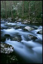 Boulders in flowing water, Middle Prong of the Little River, Tennessee. Great Smoky Mountains National Park, USA.