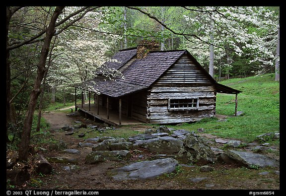 Picture photo noah ogle historical cabin framed by for Dogwood cabin