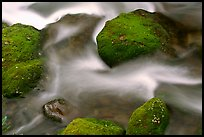 Mossy boulders and flowing water, Roaring Fork River, Tennessee. Great Smoky Mountains National Park, USA. (color)