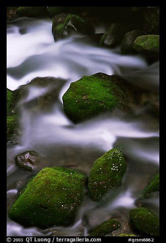 Mossy boulders and silky water, Roaring Fork River, Tennessee. Great Smoky Mountains National Park, USA.