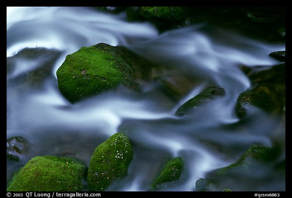 River flow and boulders covered with moss, Tennessee. Great Smoky Mountains National Park (color)