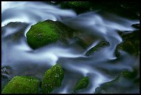 River flow and boulders covered with moss, Tennessee. Great Smoky Mountains National Park, USA. (color)