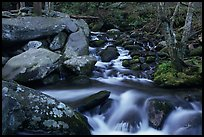 Roaring Fork River Cascades and boulders, Tennessee. Great Smoky Mountains National Park, USA.