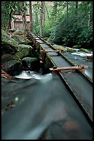 Flume to Reagan's Mill from Roaring Fork River, Tennessee. Great Smoky Mountains National Park, USA. (color)