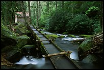 Flume carrying water to Reagan's mill next to Roaring Fork River, Tennessee. Great Smoky Mountains National Park ( color)