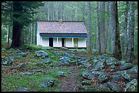 Alfred Reagan saddlebag house, Tennessee. Great Smoky Mountains National Park, USA. (color)