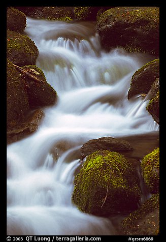 River Cascading, Roaring Fork, Tennessee. Great Smoky Mountains National Park (color)