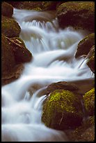 River Cascading, Roaring Fork, Tennessee. Great Smoky Mountains National Park ( color)