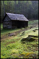 Cabin at Jim Bales place, early morning, Tennessee. Great Smoky Mountains National Park ( color)