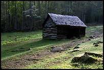 Jim Bales log Cabin in meadow, early morning, Tennessee. Great Smoky Mountains National Park, USA. (color)