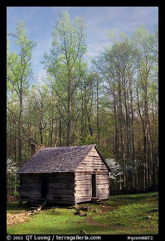 Historic log Cabin, Roaring Fork, Tennessee. Great Smoky Mountains National Park (color)