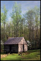 Historic log Cabin, Roaring Fork, Tennessee. Great Smoky Mountains National Park, USA.