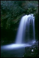Grotto falls in darkness of dusk, Tennessee. Great Smoky Mountains National Park, USA. (color)