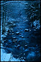 Creek and snowy trees in winter, Tennessee. Great Smoky Mountains National Park, USA.