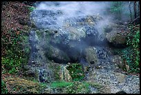 Thermal spring water flowing over tufa terrace. Hot Springs National Park ( color)